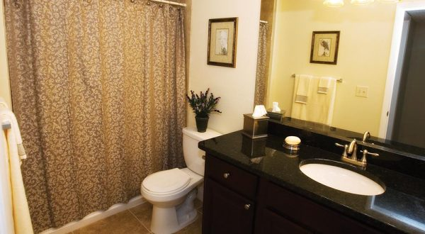 full-bathroom-with-toilet-sink-and-shower